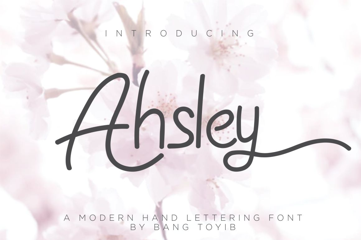 Ahsley - Beautiful Font example image 1