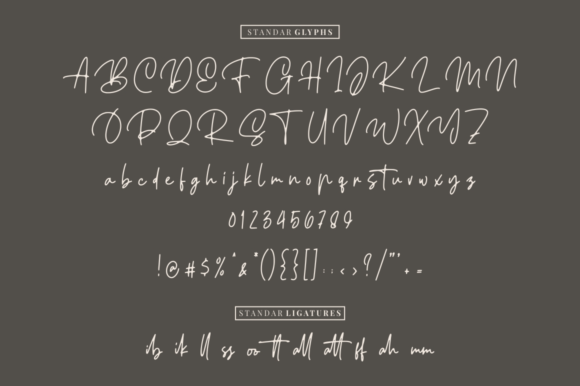 Ellouise - Handwritten Font example image 7