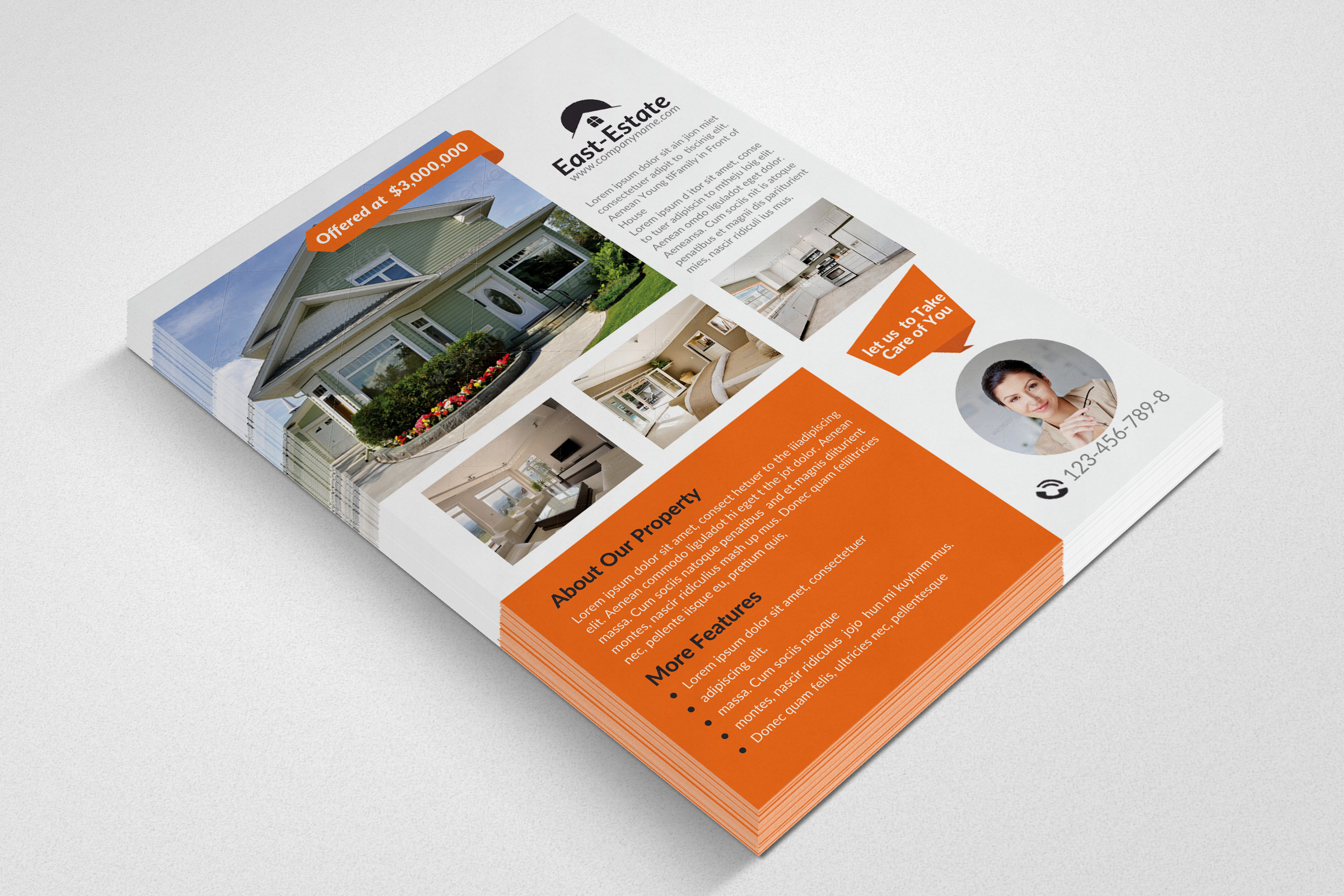 Real Estate Flyer Templates example image 3