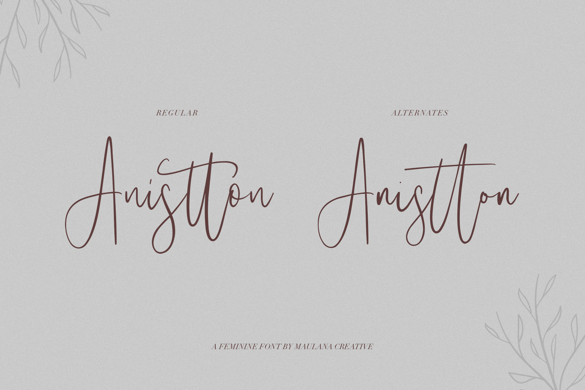 Anistton - Feminine Font example image 2