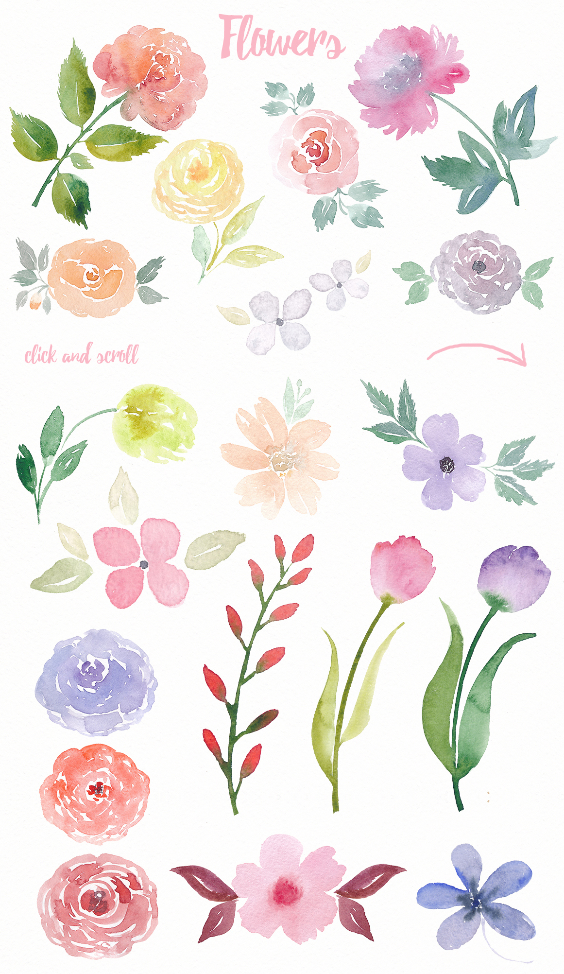 Watercolor Floral Pack example image 4