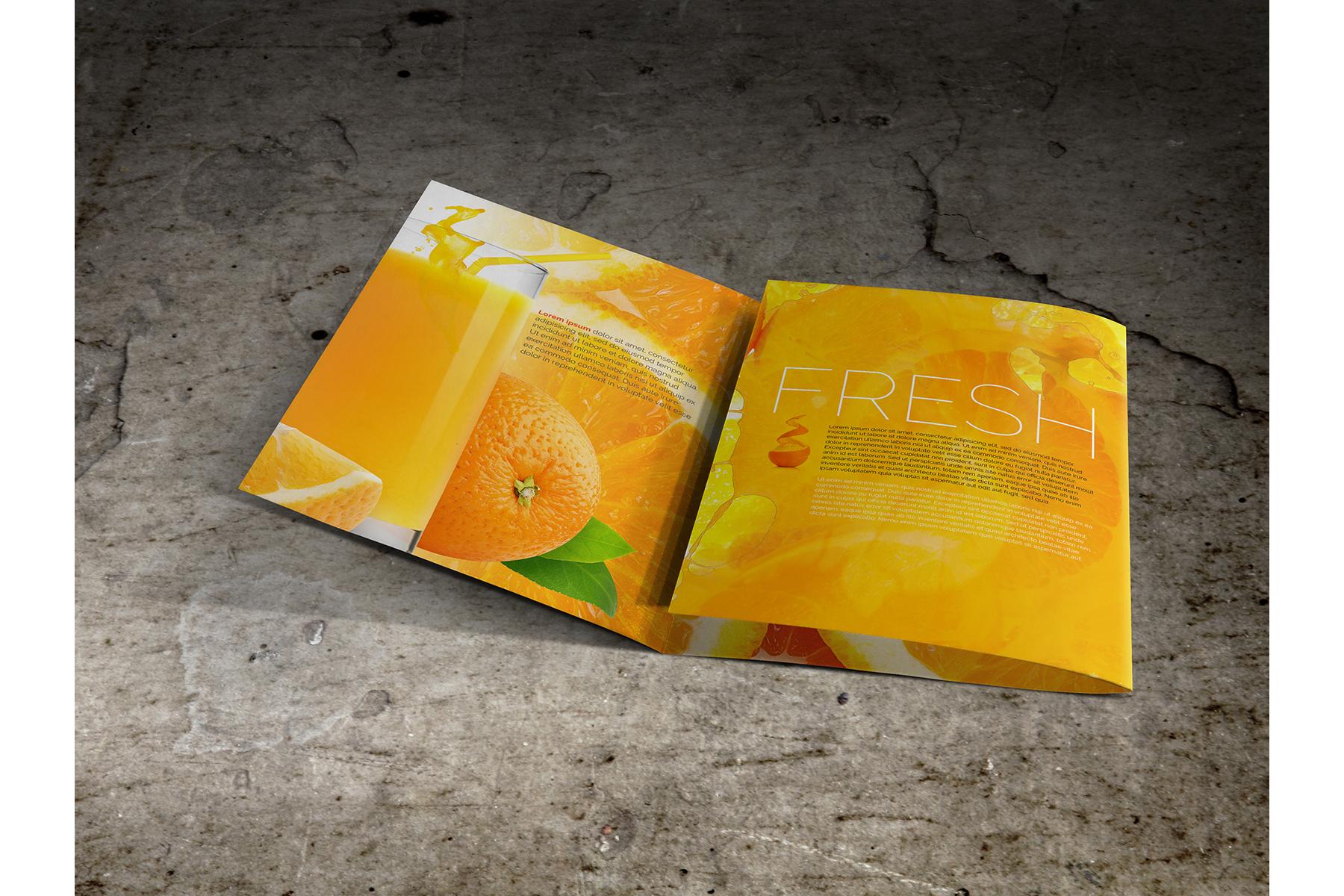 Large Trifold Brochure Mockup example image 7