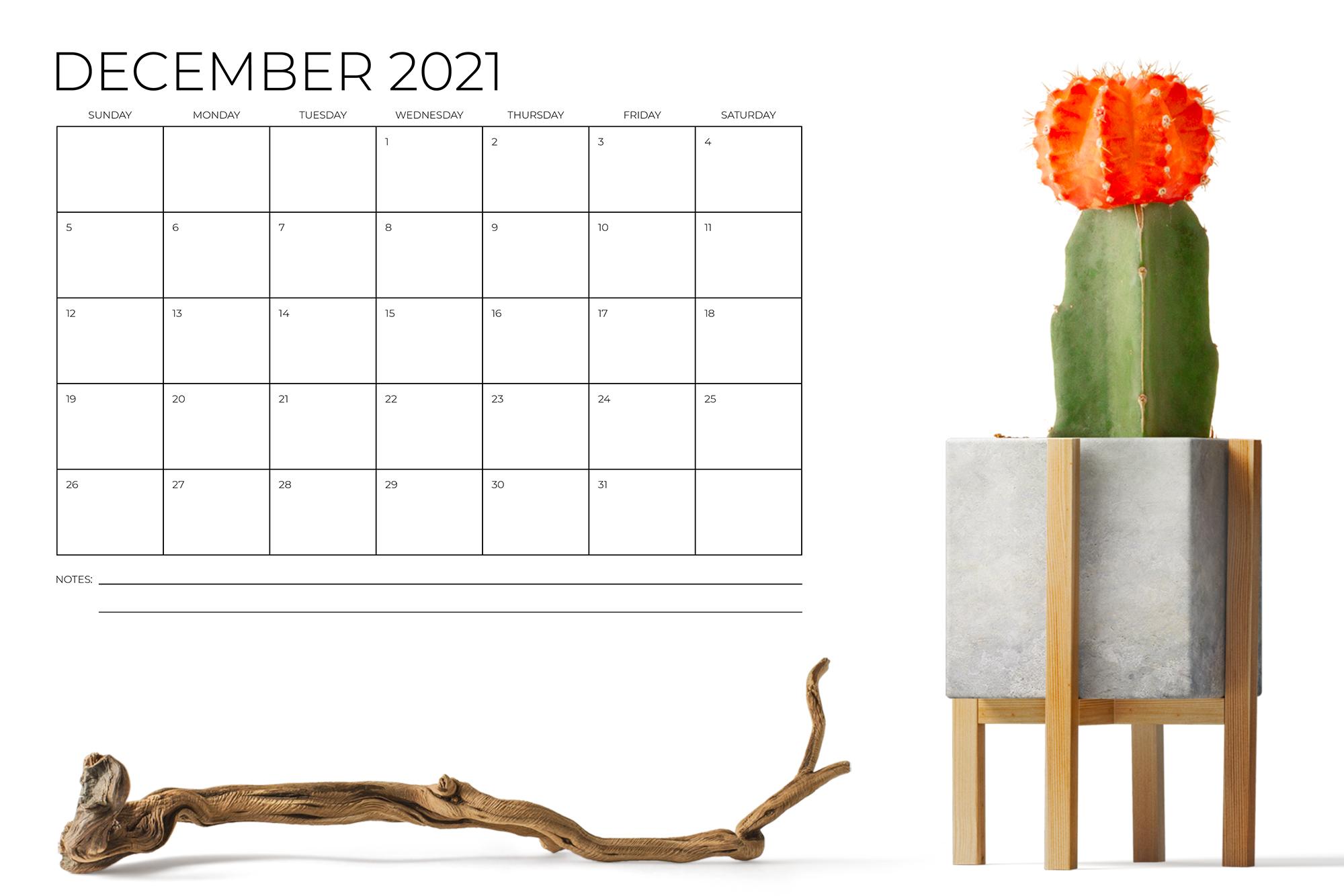 8.5 x 11 Inch Minimal 2021 Calendar example image 6