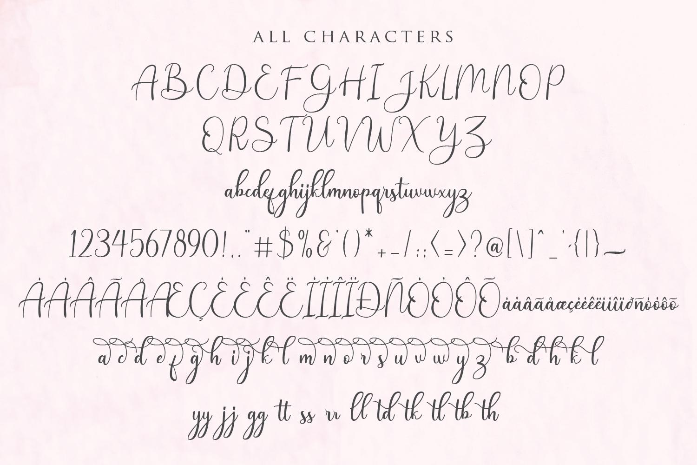 Andina - Modern Script Font example image 11