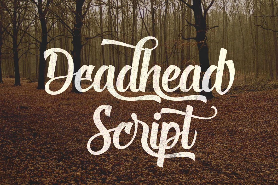 Deadhead Script example image 1