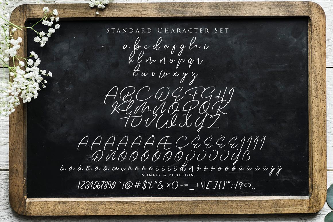 Jovanka Script Font example image 7