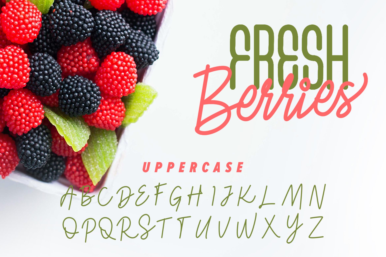 Fresh Berries - Script & Sans Font example image 10