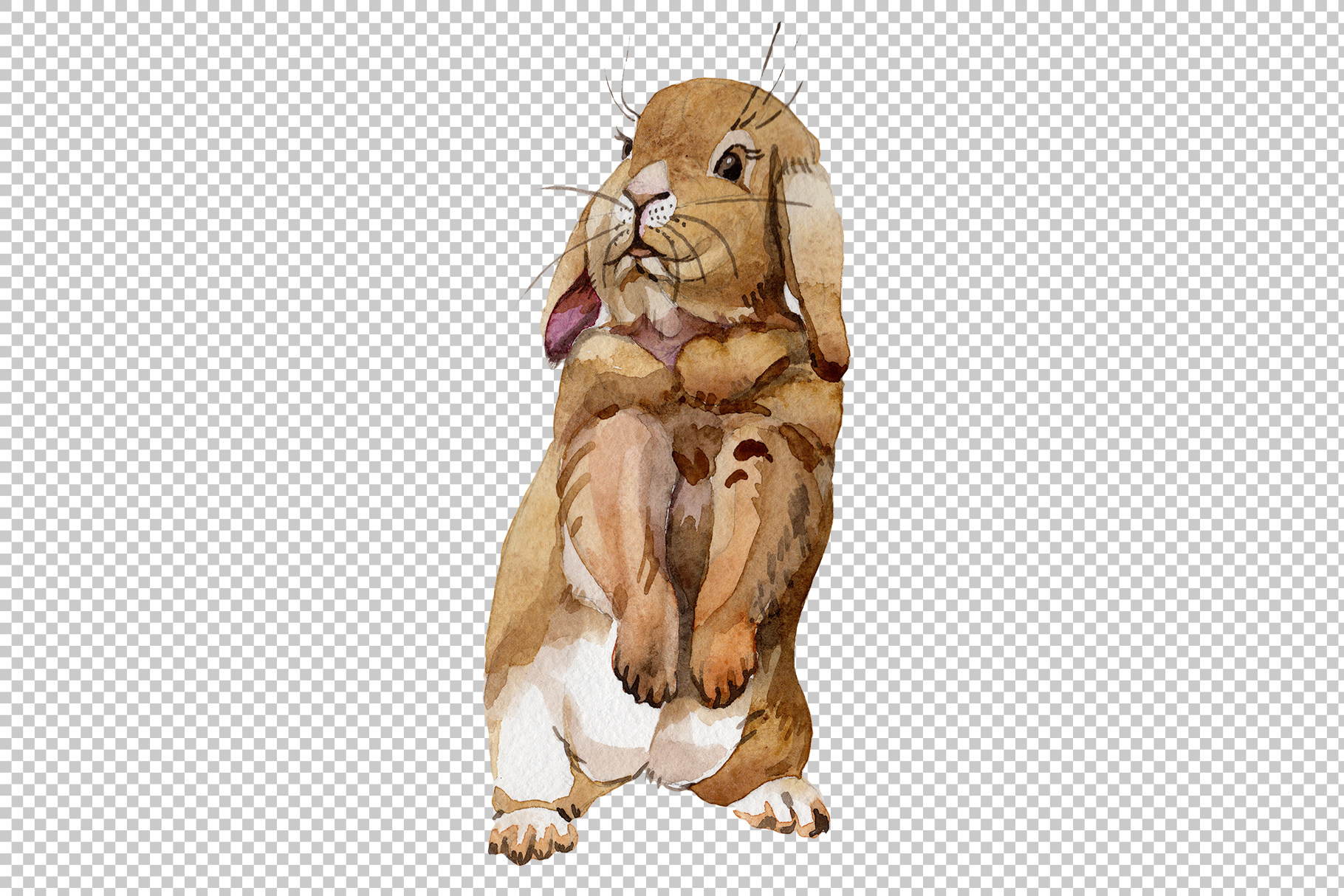 Easter bunny Watercolor png example image 2
