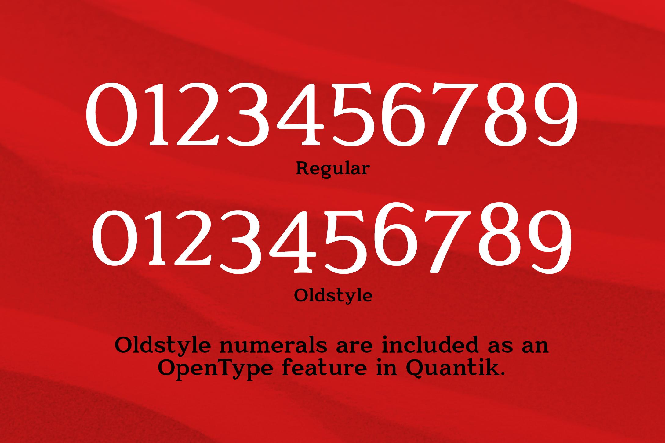 Quantik Elegant Contemporary Serif example image 5