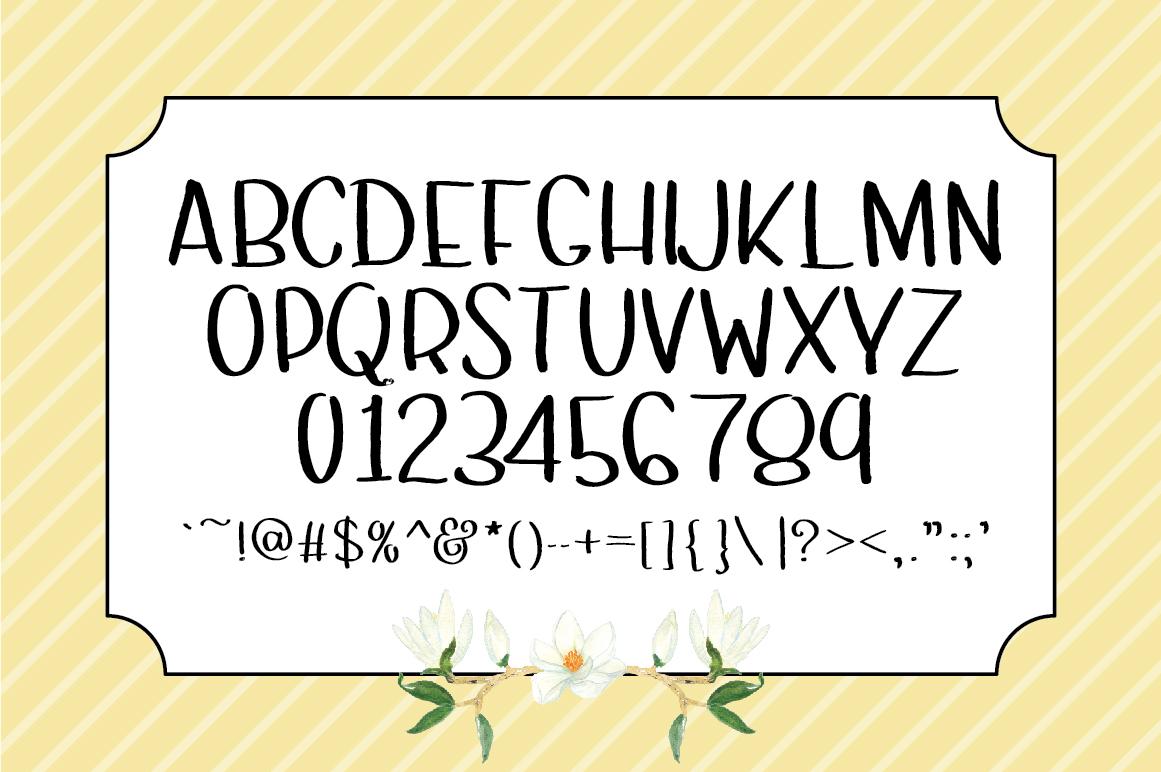 Sansy: A Sans Serif Font example image 2