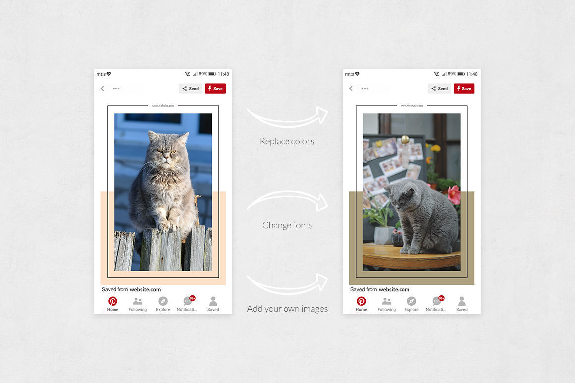 Cats Pinterest Posts example image 5