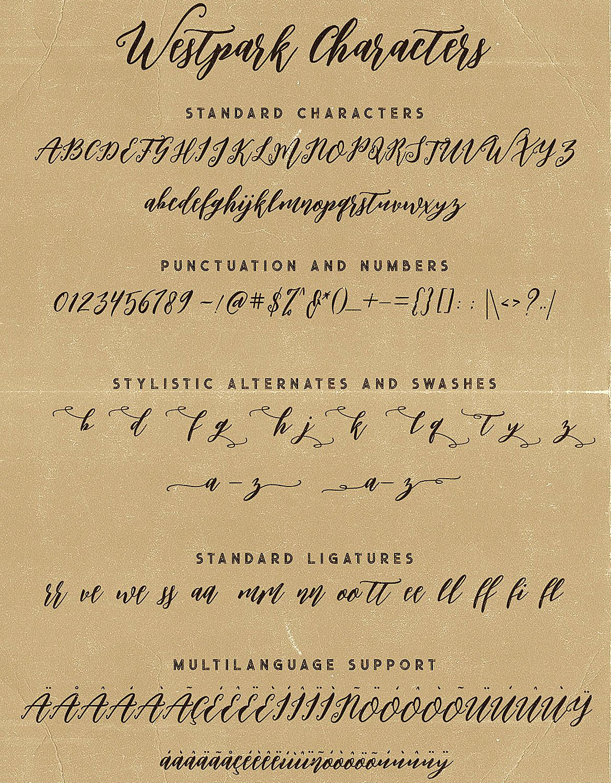 Westpark Script Font Duo example image 7