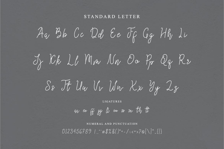 Queenesia Script Font example image 11