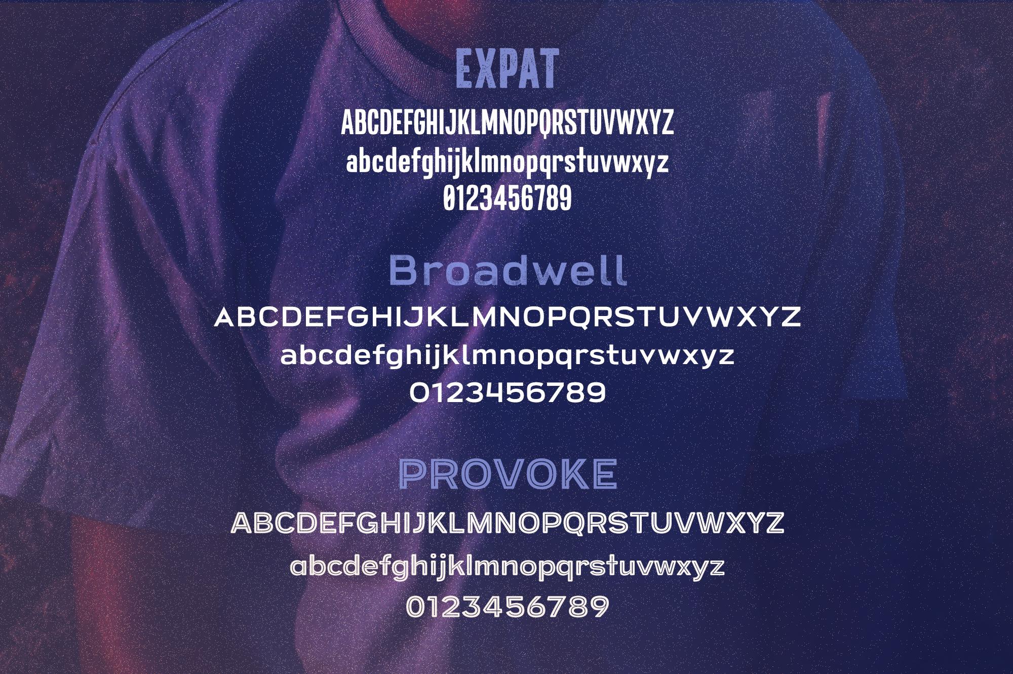 Screen Print Startup Fonts Bundle example image 5
