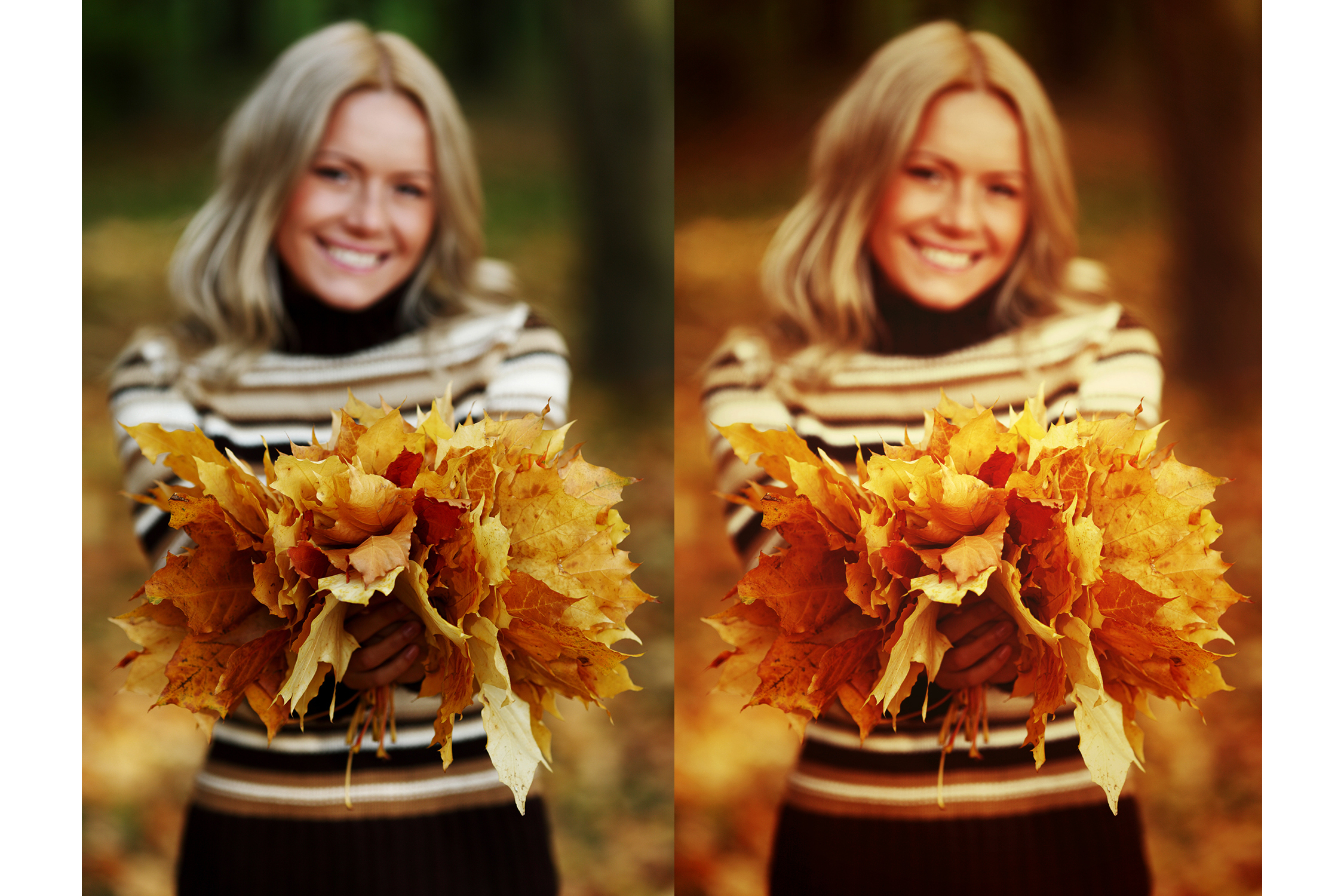 42 Autumn Photoshop Actions Collection (Action for photoshop CS5,CS6,CC) example image 2