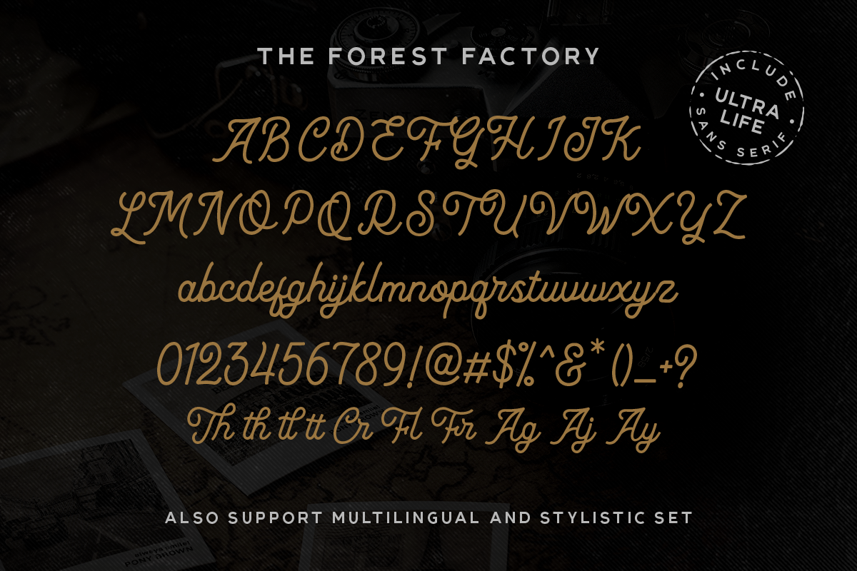 The Forest Factory & Bonus example image 6