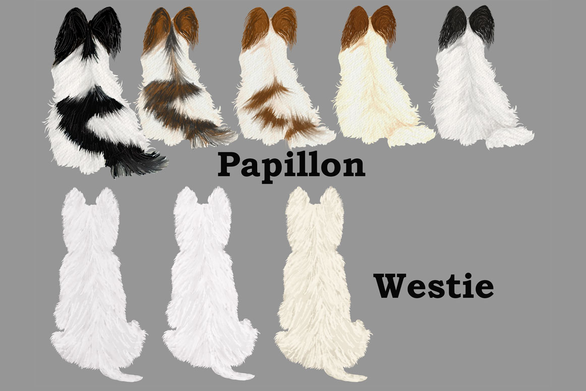 Dog Clipart, Dog breeds, Pet clipart,Puppies clipart Dog Png example image 6