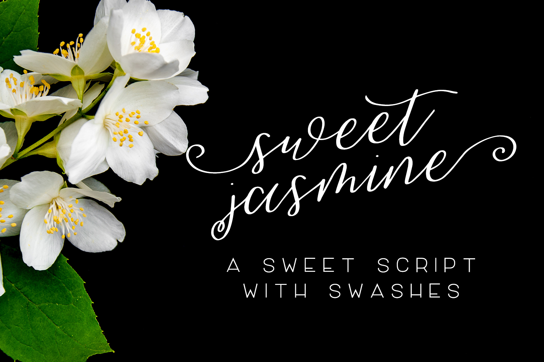 Sweet Jasmine Script example image 1
