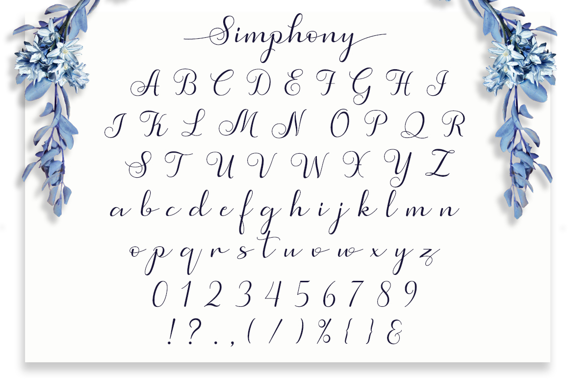 Simphony Caligraphy Font example image 9