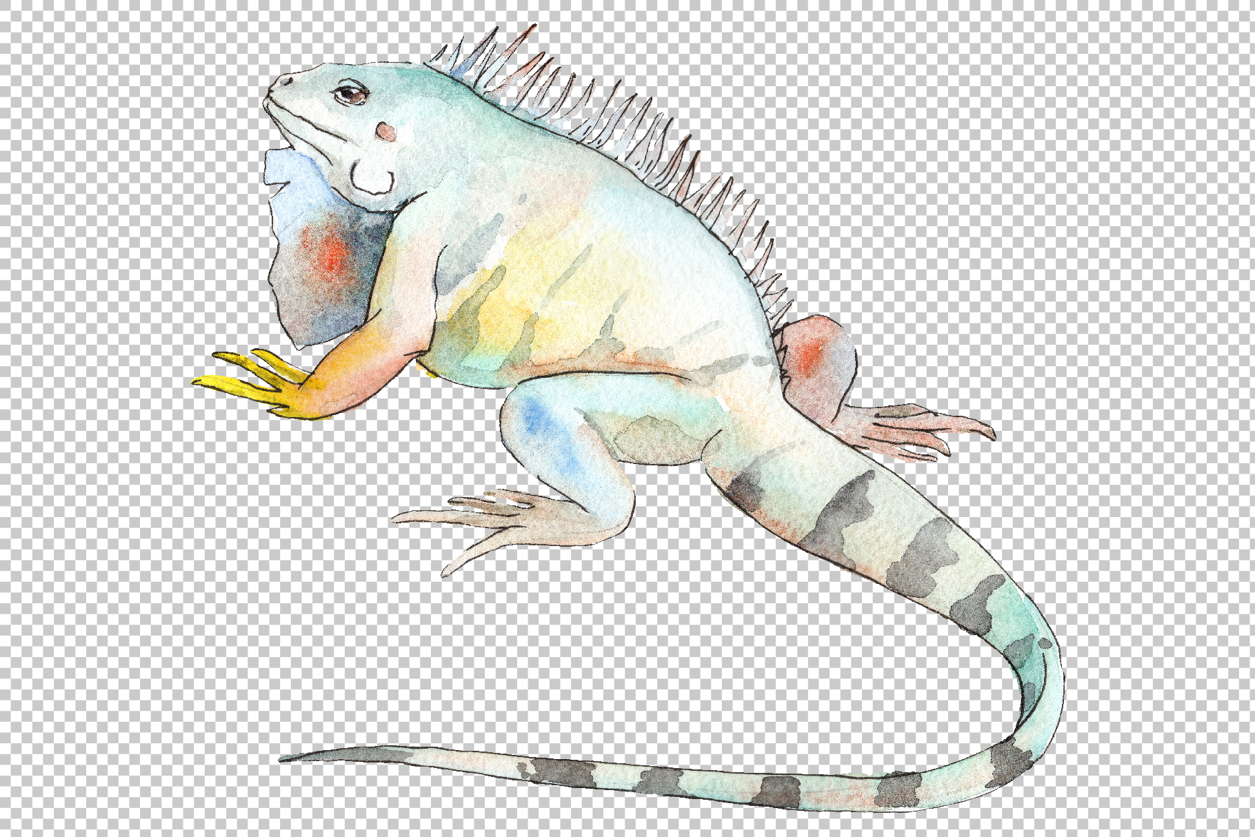 Iguana-1 Watercolor png example image 5