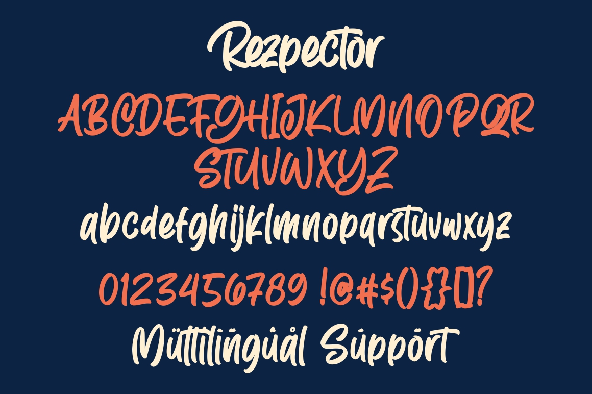 Rezpector || Stylish Display Font example image 8