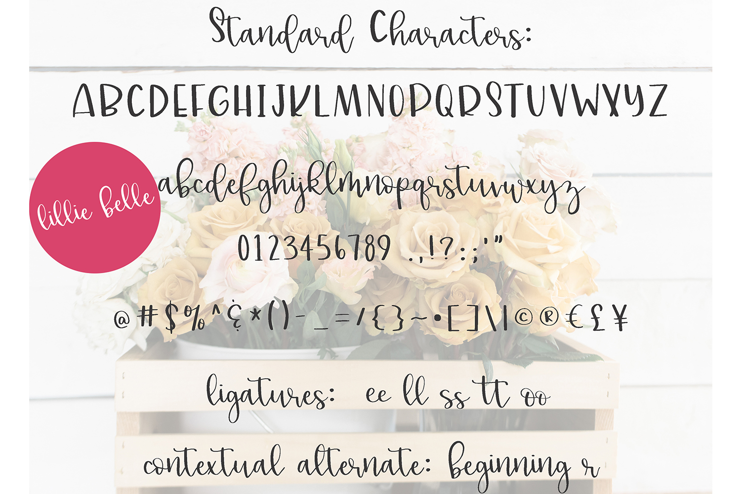 Handwritten Fonts bundle example image 2