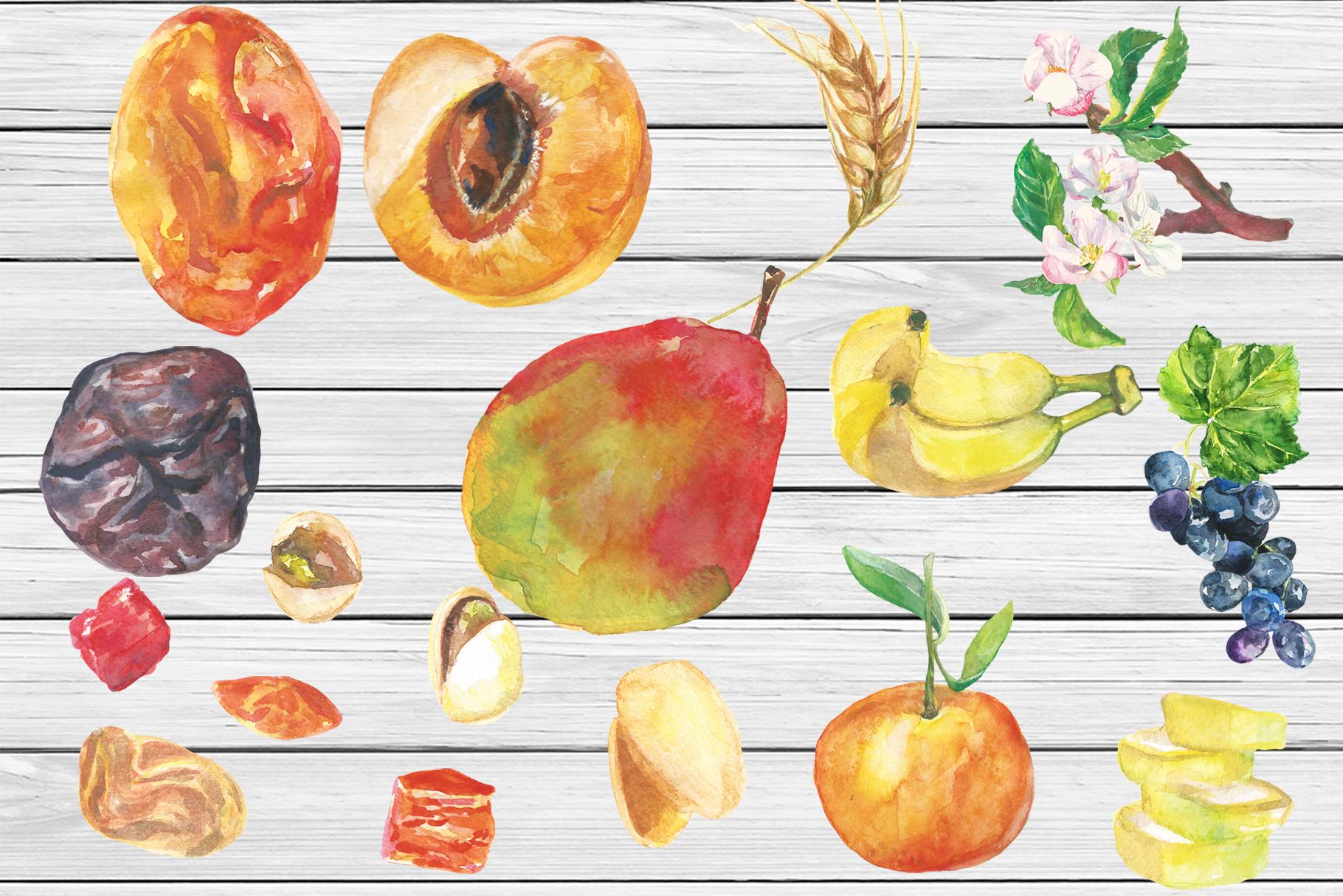 Watercolor Tu Bishvat digital clip art example image 5