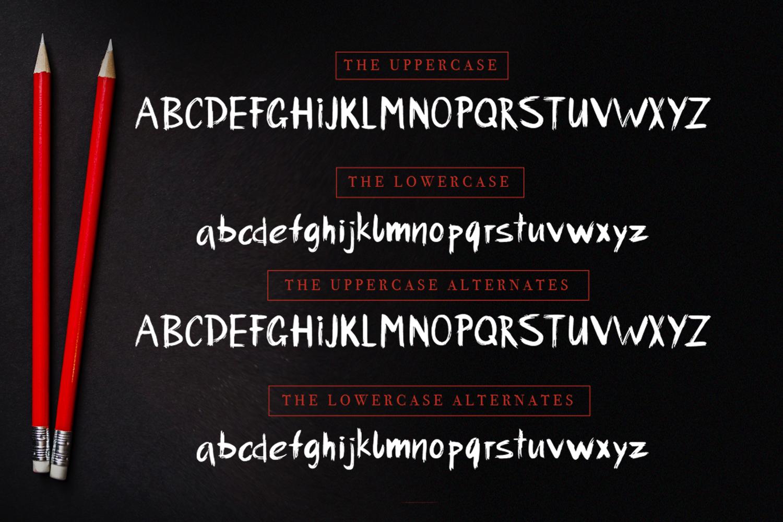 Urbano brush font + swashes example image 7