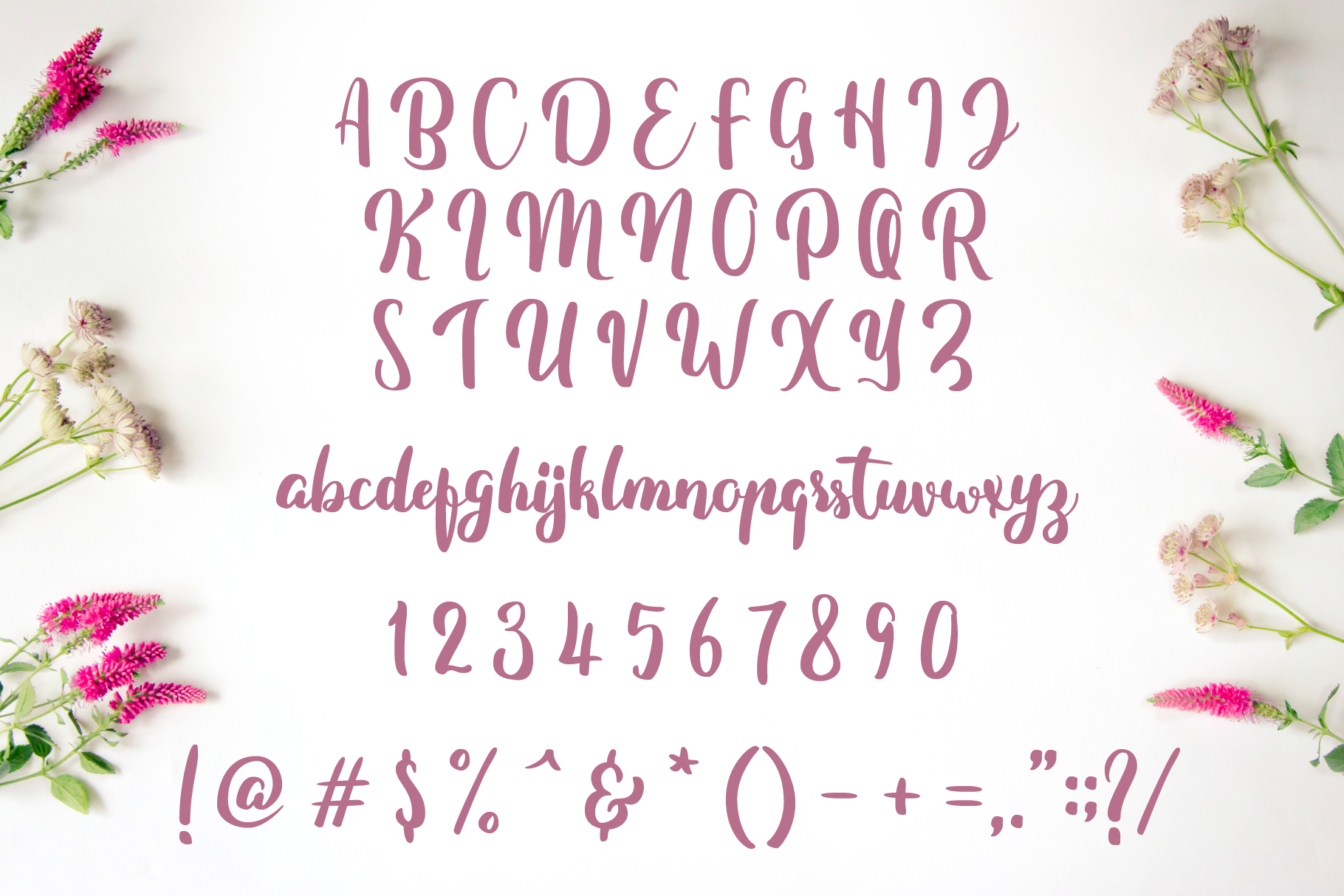Fitamint Script - Font example image 2