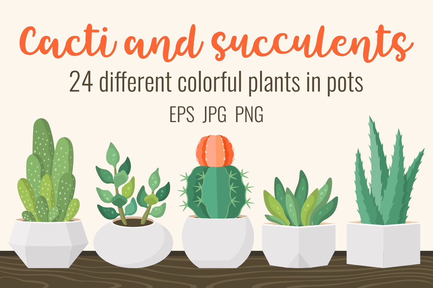 Cacti and succulents in pots example image 1