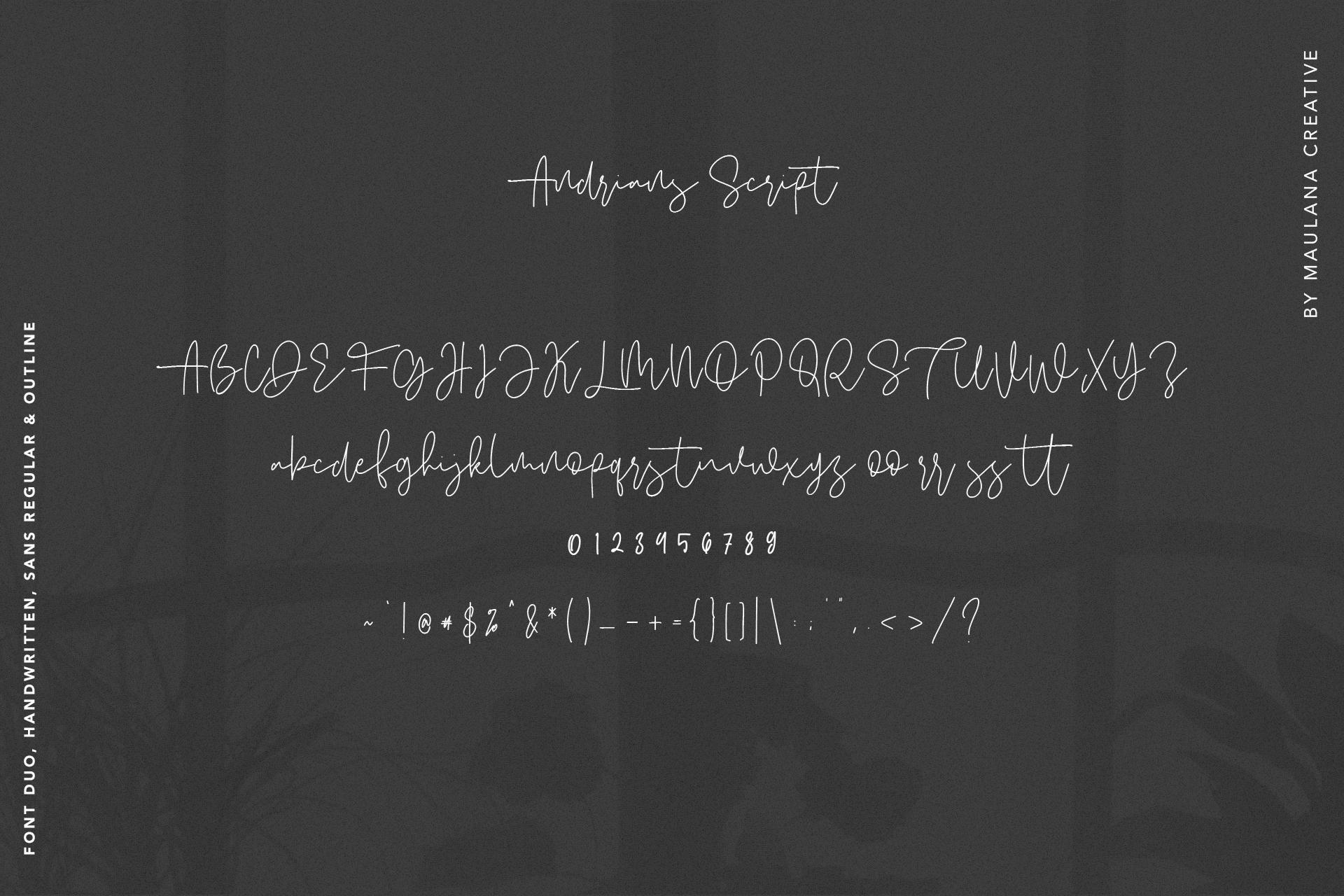 Andrians Script Sans Font example image 10