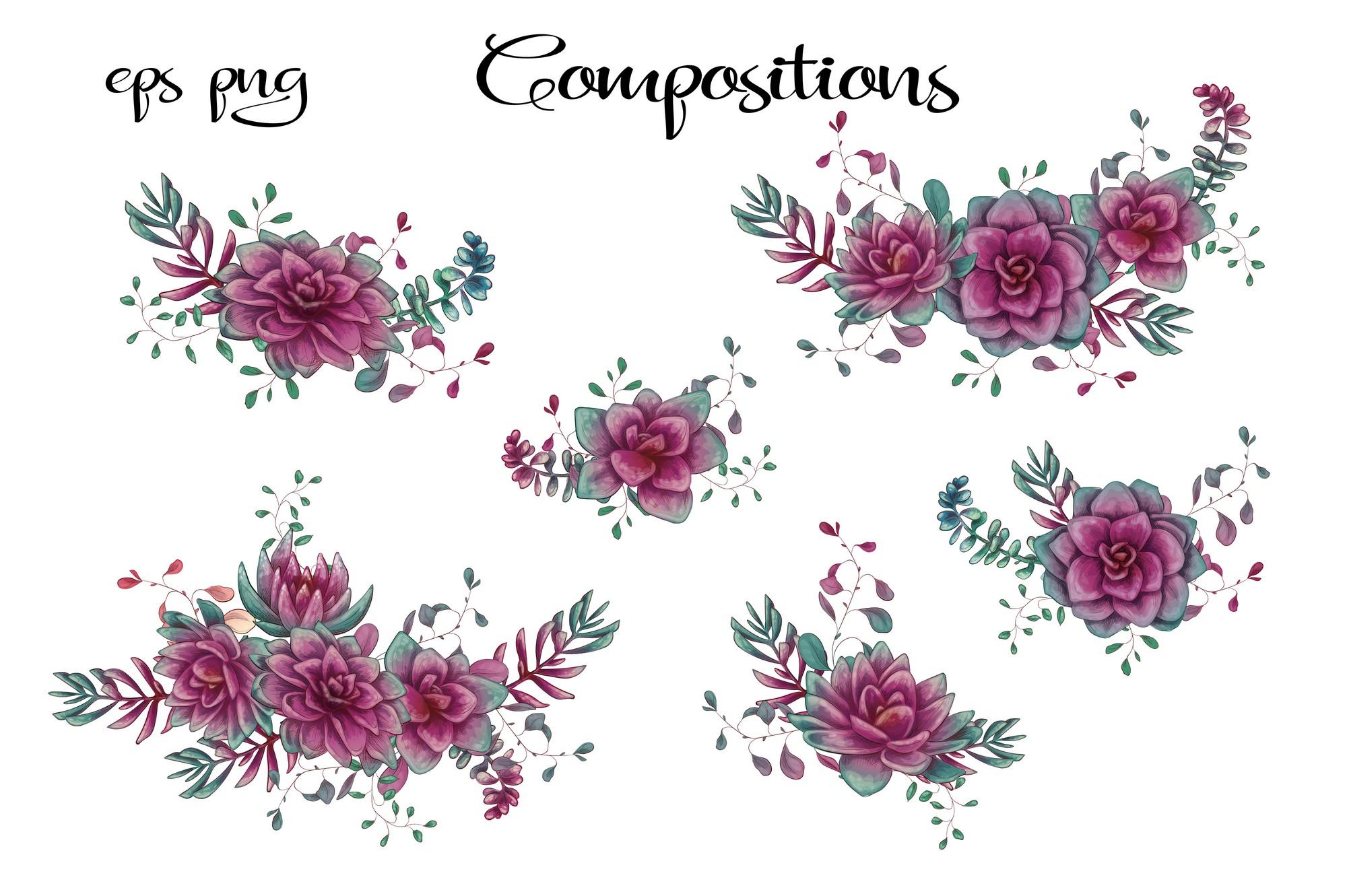 Cacti & Succulents in purple example image 3