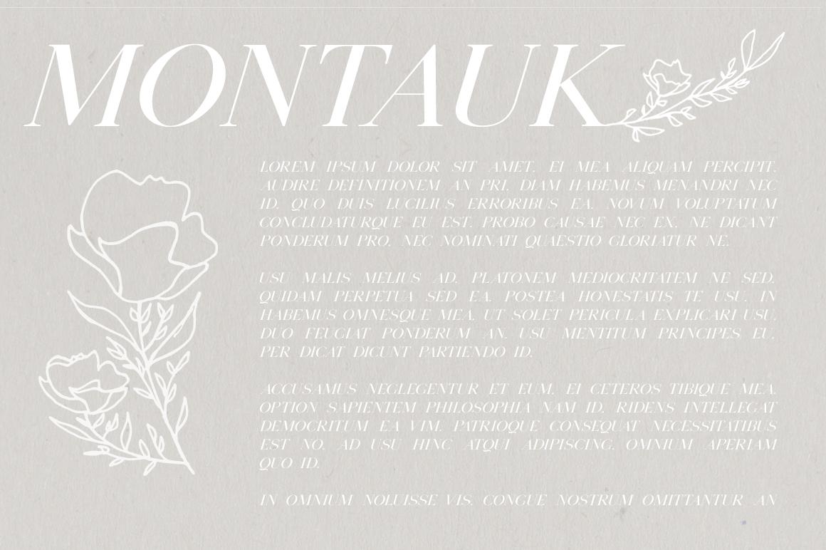 Montauk | Serif + Bonus Vectors example image 3