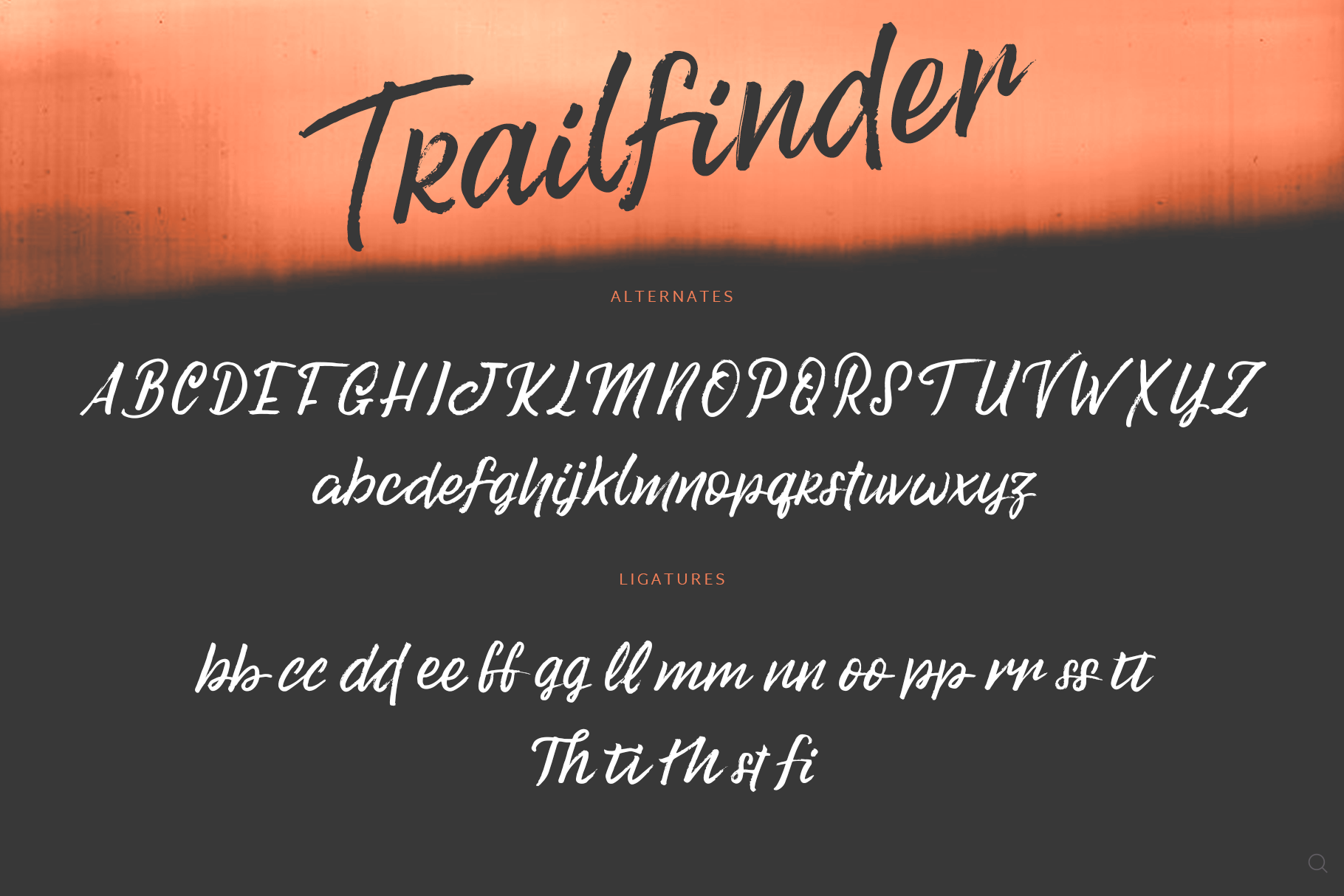 Trailfinder | A Brush Script Font example image 8