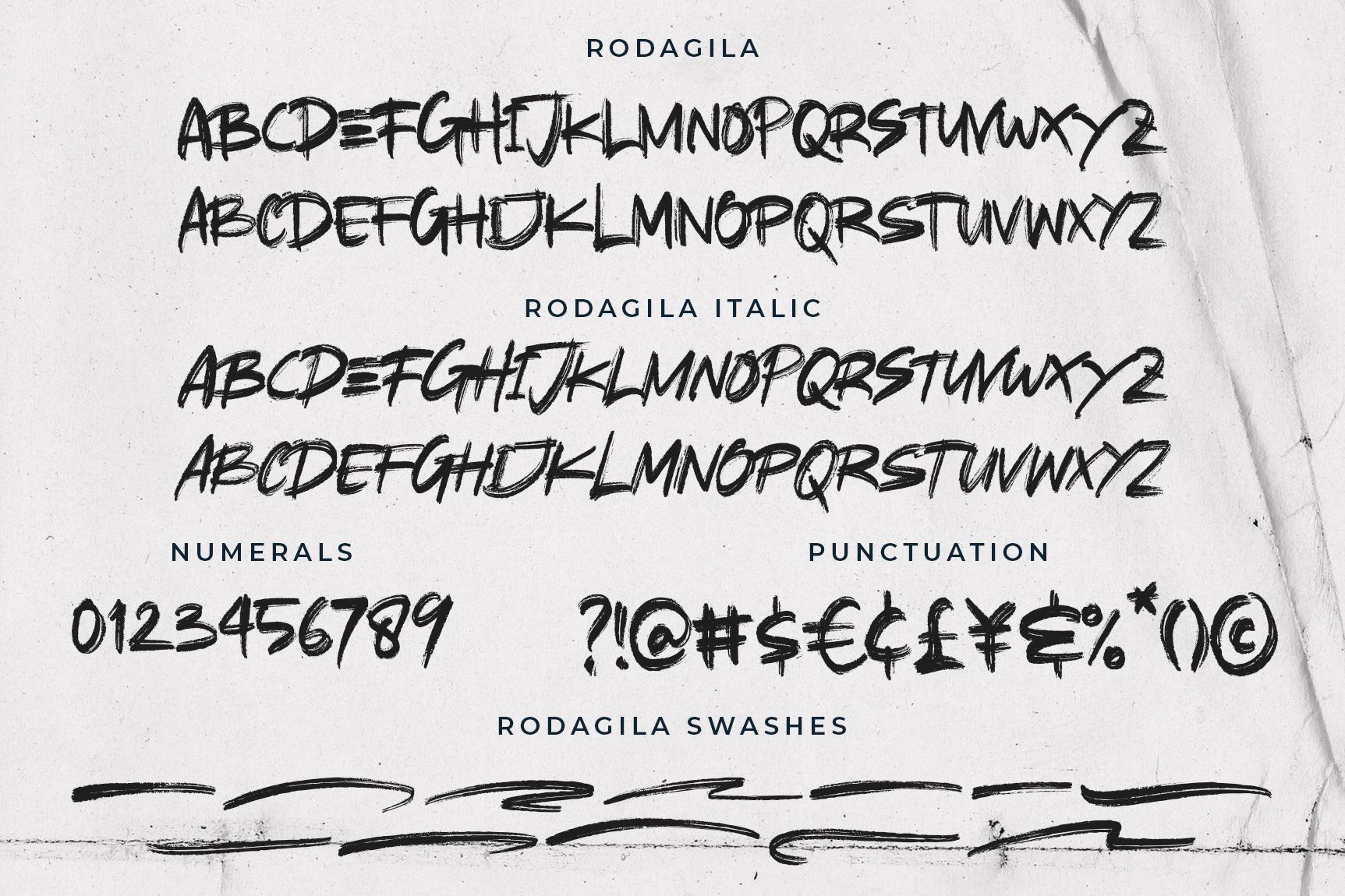 RODAGILA example image 8