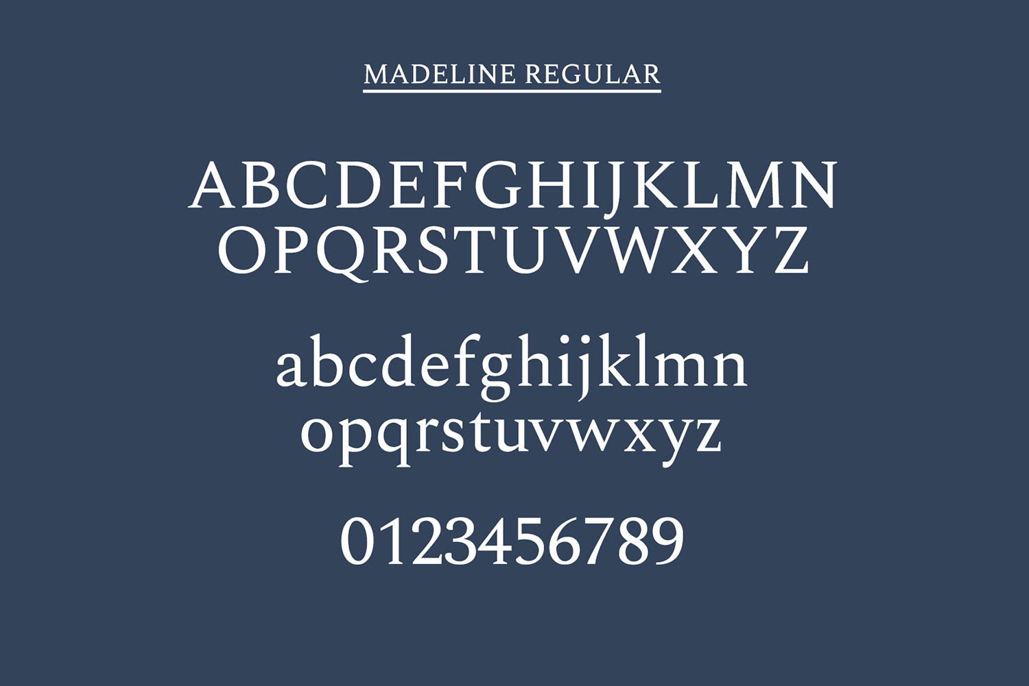 Madelin Serif Font Family Pack example image 8