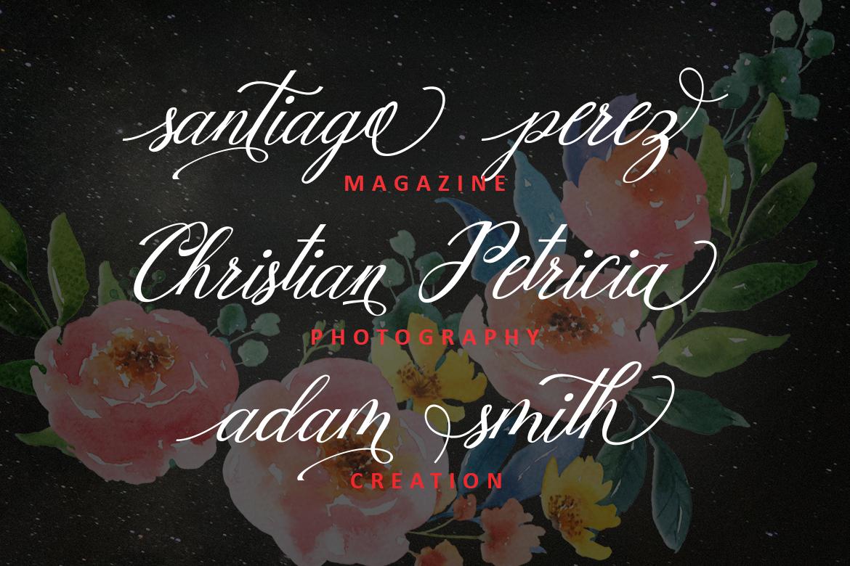 Mottingham Elegant Calligraphy Typeface example image 8