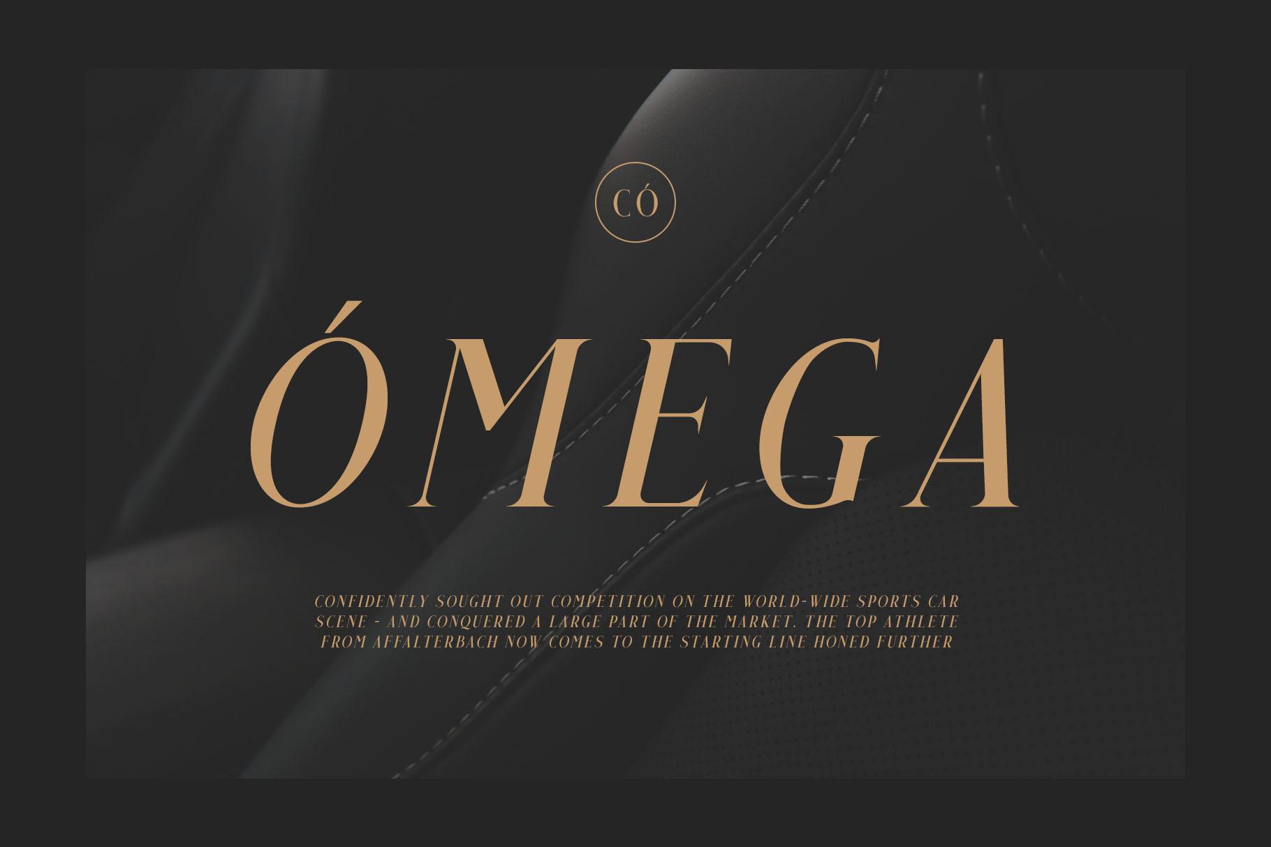 Qualey - Elegant Serif Font example image 7