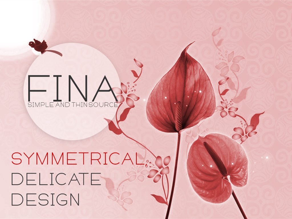 Fina Font example image 4