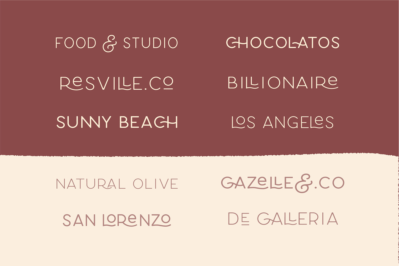 Carose Sans- 6 Elegant Typeface example image 11