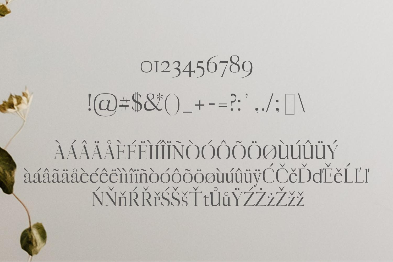 Myron Serif Typeface example image 3