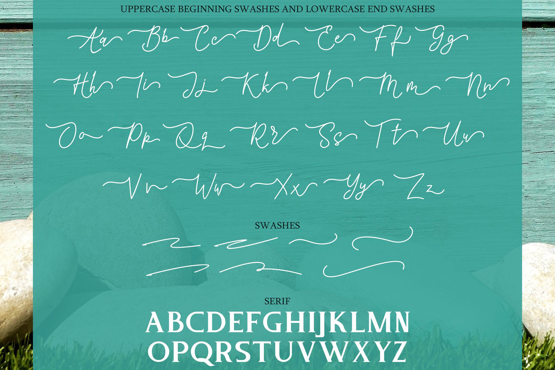 Tintri Pure - Script and Serif example image 11