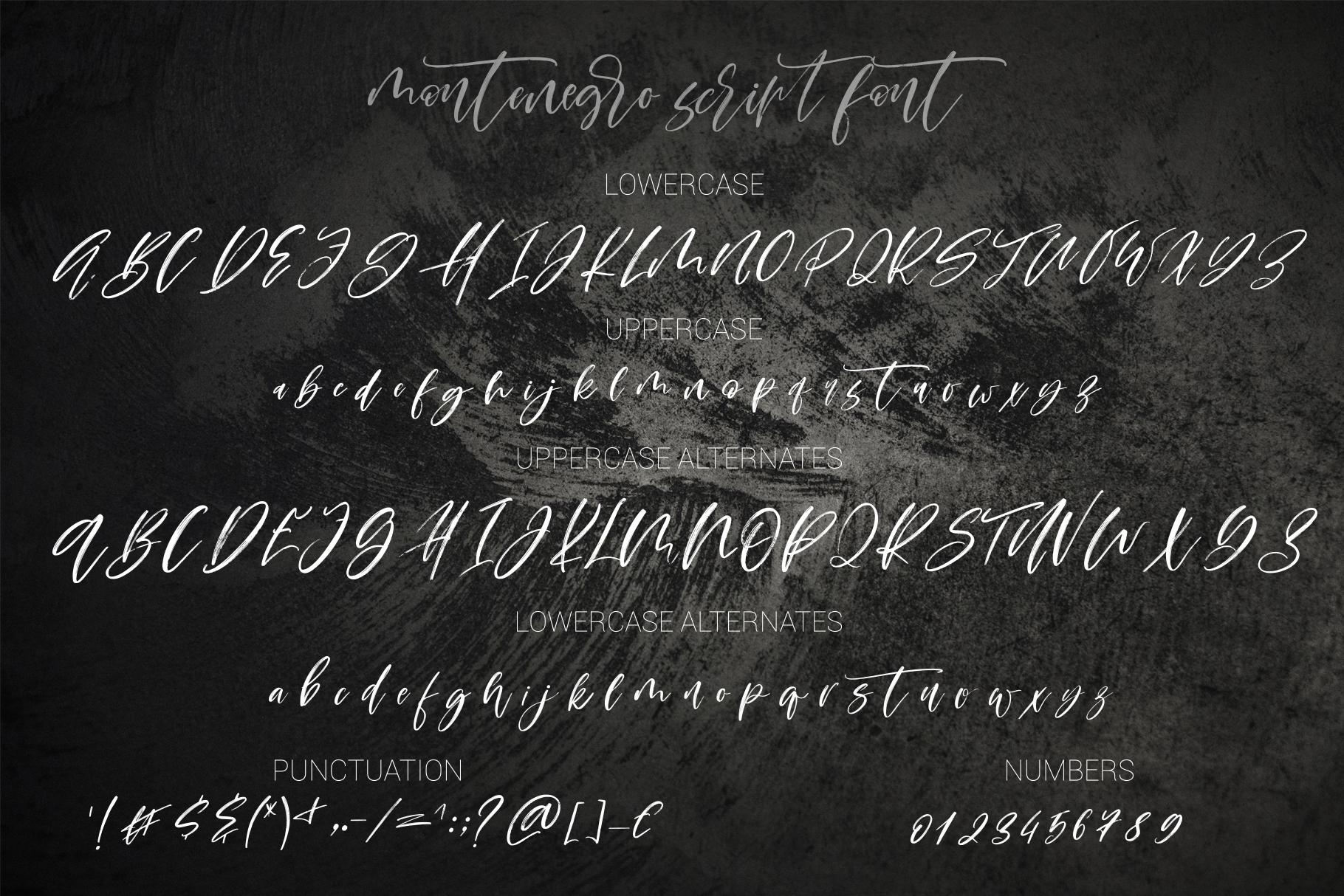 Montenegro textured script font example image 17