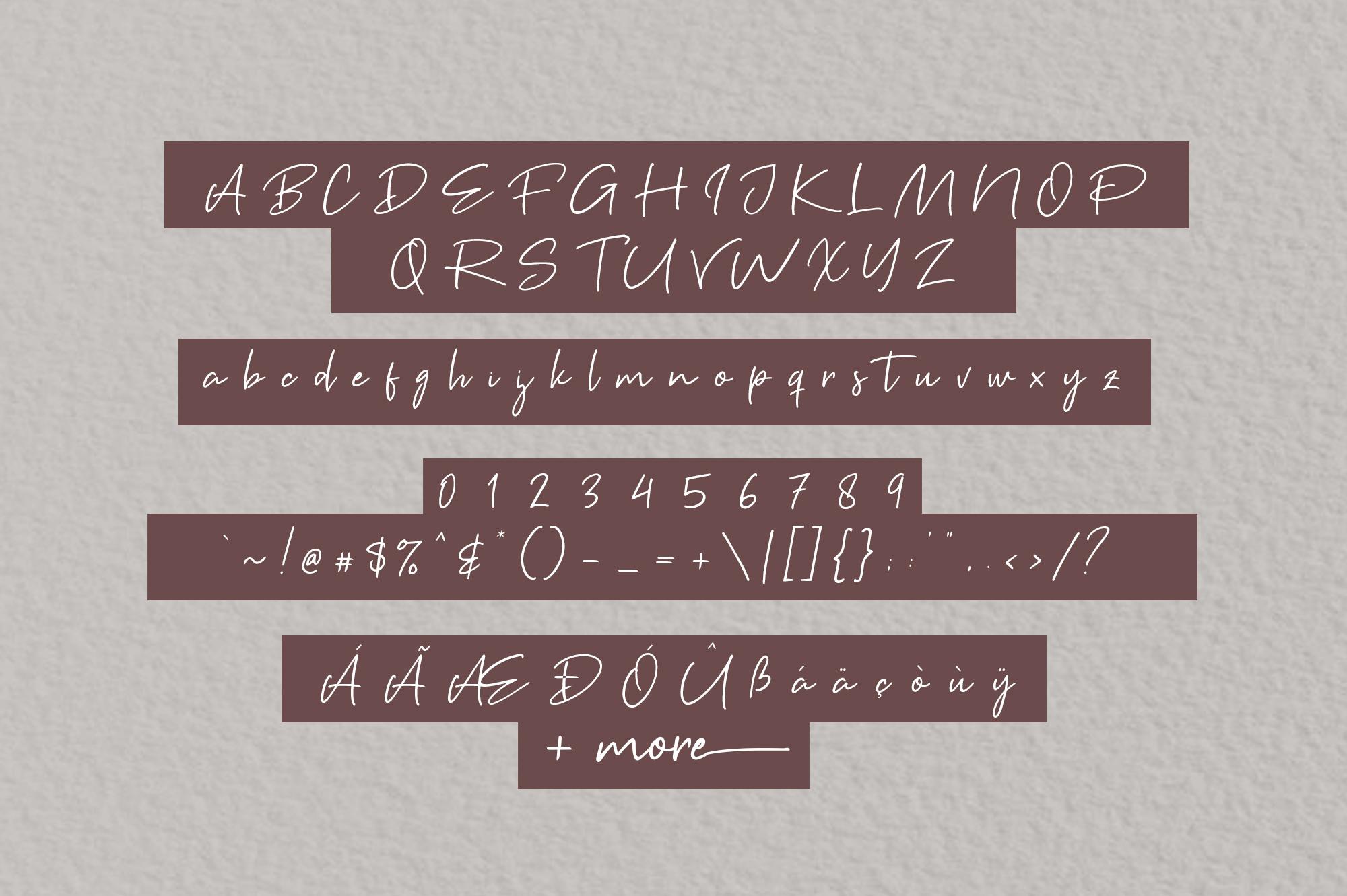 Brown Pen Script example image 6