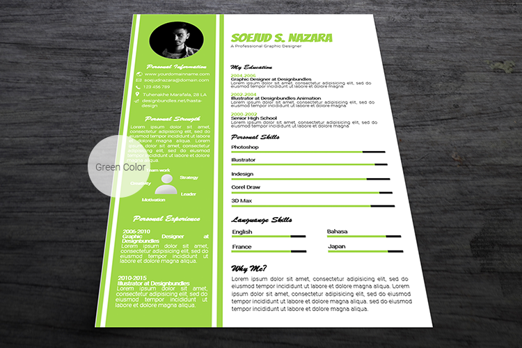 A4 Resume Templates Word example image 4