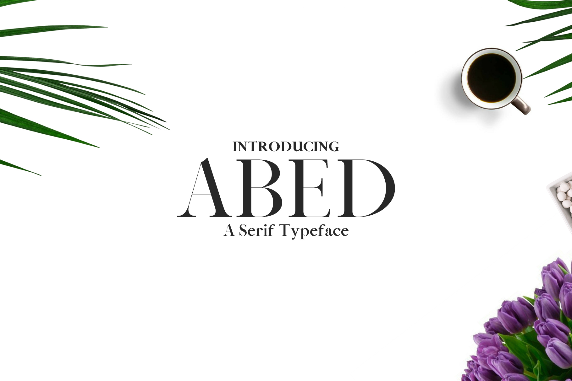 Abed Serif 5 Font Family Pack example image 1