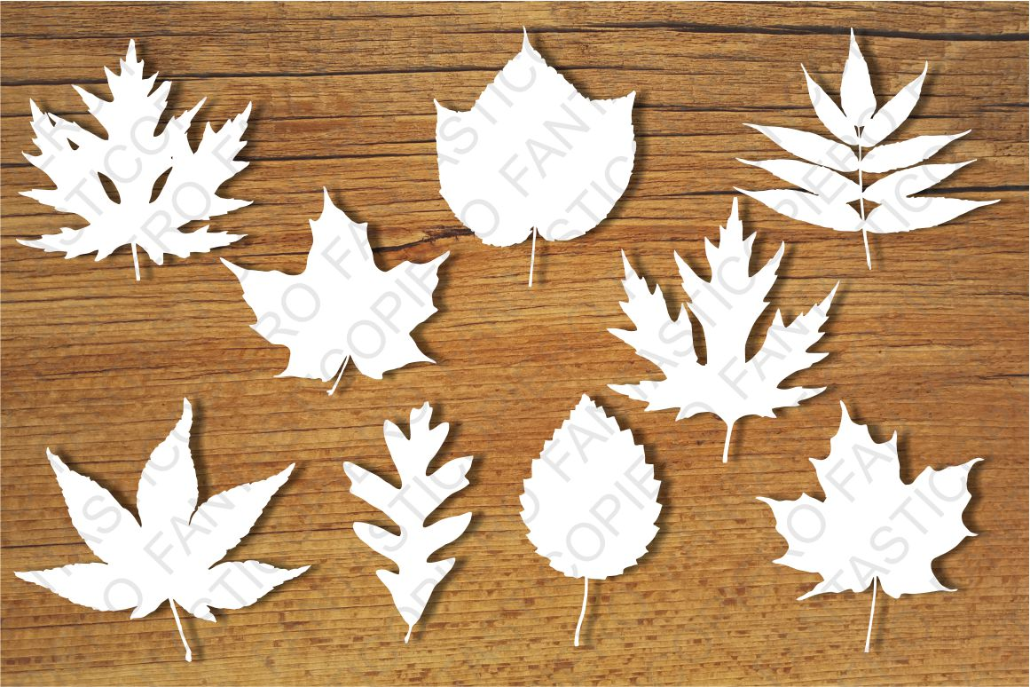 Leaves SVG files for Silhouette Cameo and Cricut. example image 1