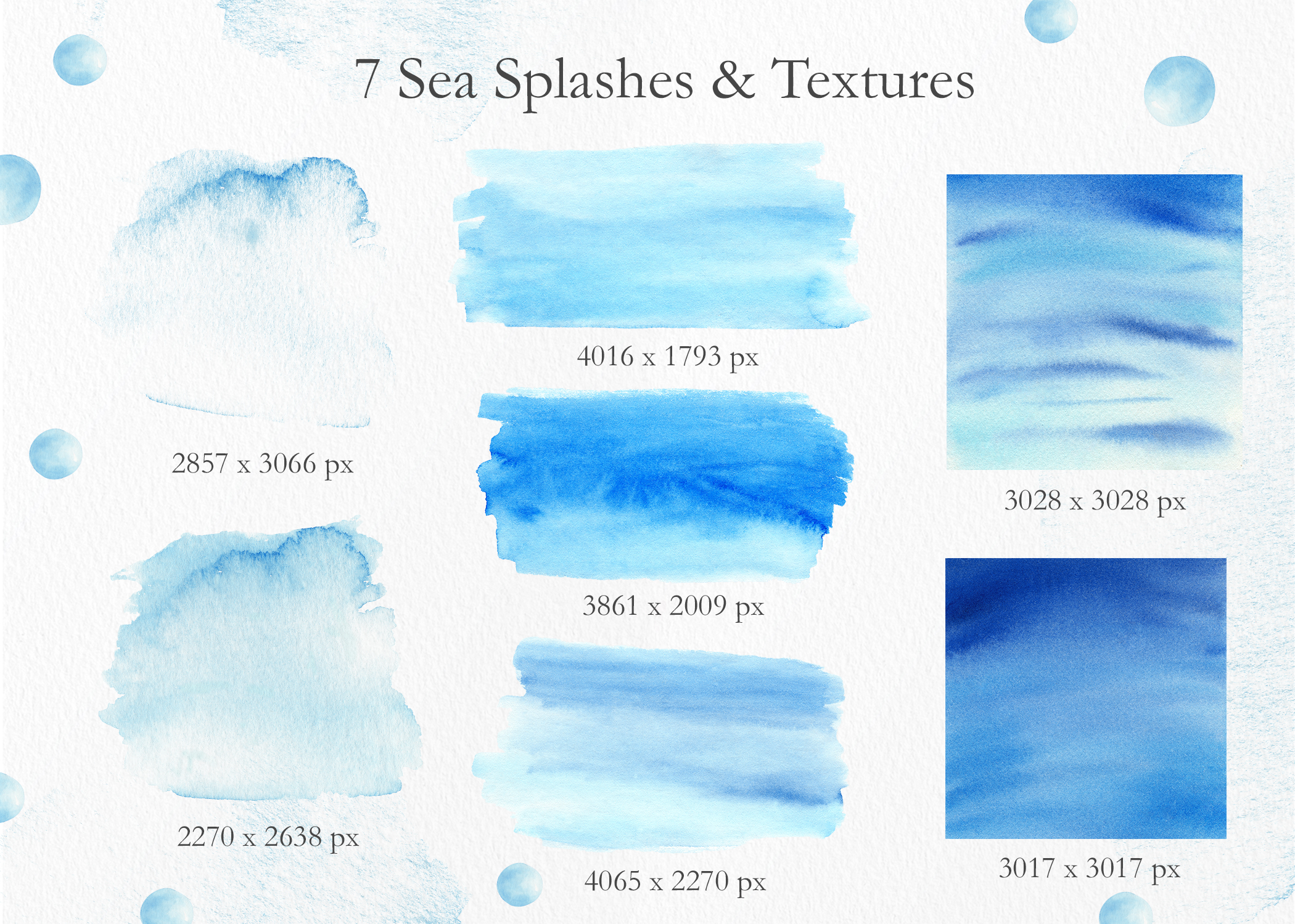 Seashells Clipart Collection example image 3