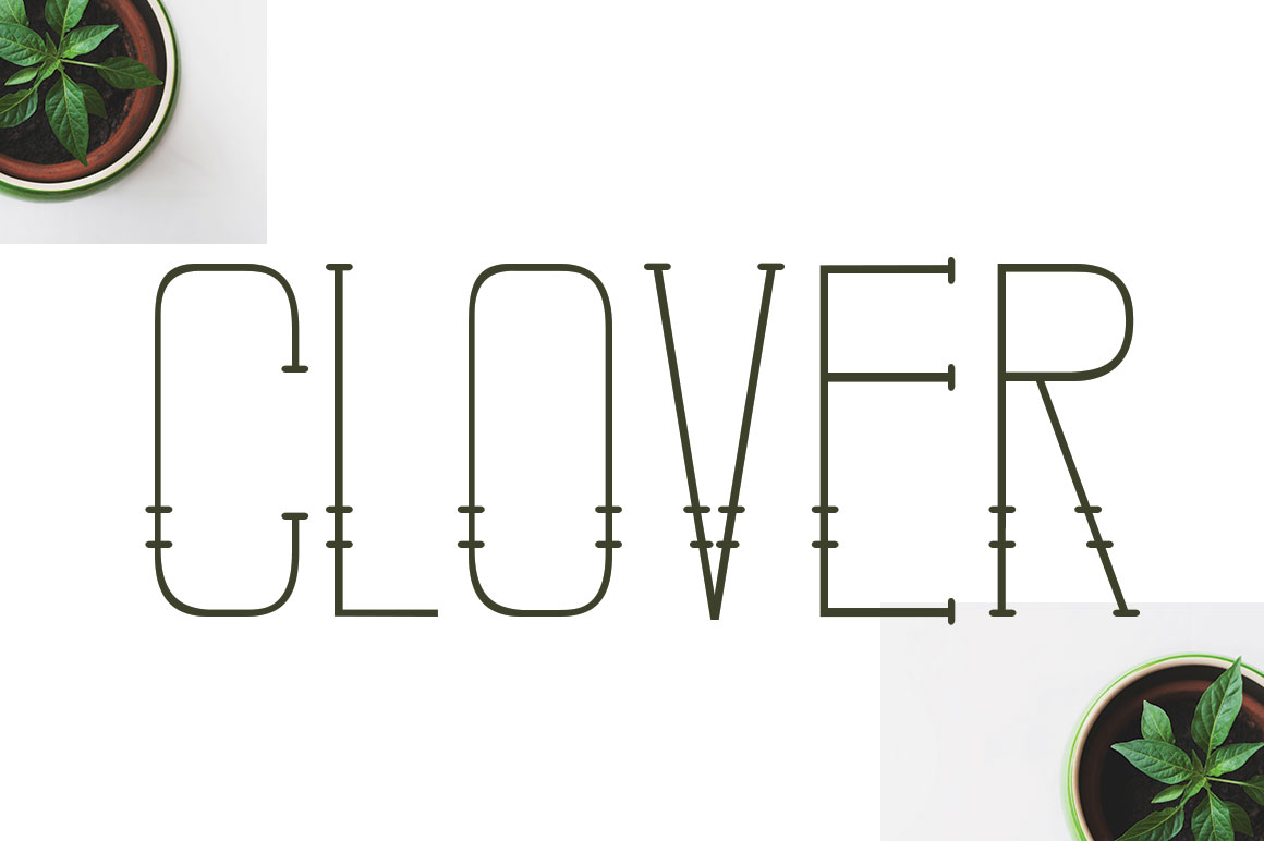 CLOVER FAMILY example image 9