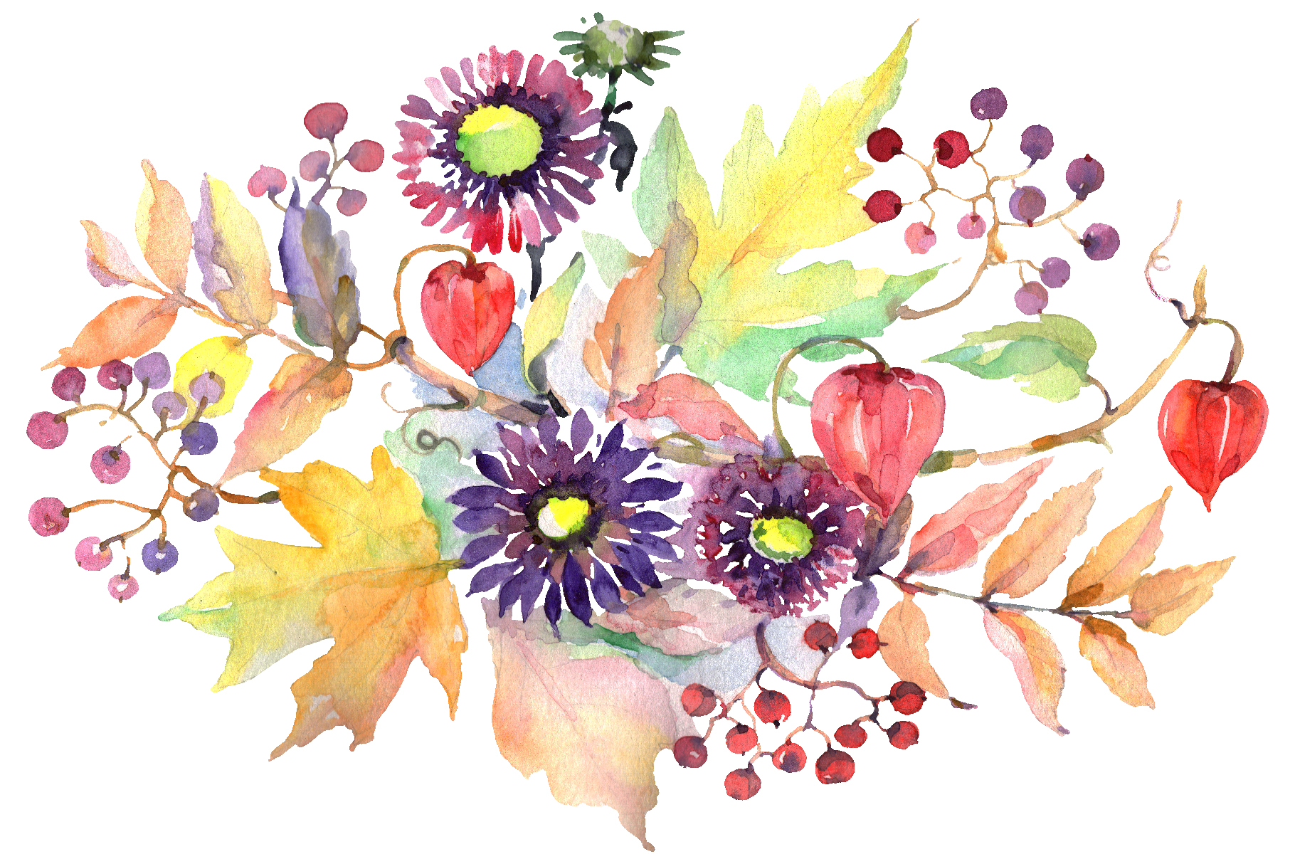 Autumn Bouquet with asters and physalis Watercolor png example image 2